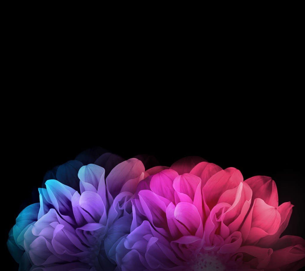 LG-G-Flex-2_Wallpaper_03-1024x910