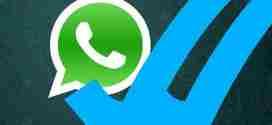 Come eliminare le due spunte blu su WhatsApp e leggere i messaggi