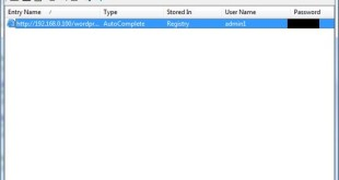 Recuperare password salvate su Internet Explorer
