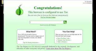 scaricare Tor 8.0 Italiano