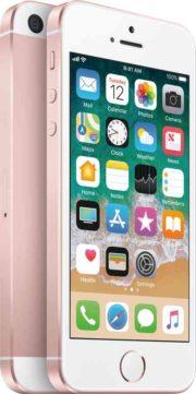 Manuale iPhone SE