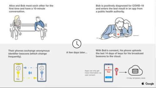 Come si mette lapplicazione Immuni Apk su smartphone Huawei e Honor
