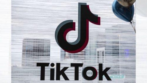 Tik Tok logo come si toglie dai video